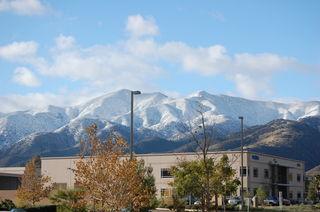 Snow 12-18-08 005